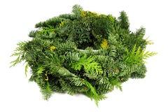 Green wreath Stock Image