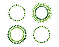 Green wreaths. Four green wreaths in different shapes Royalty Free Illustration