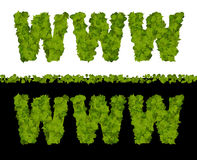 world wide web(www) go green Stock Photos