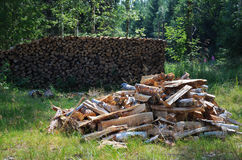 Green yard with woodstack. There is a heap of chopped chockes in the green rural yard. In the background the firewood is stacked firmly Royalty Free Stock Photo