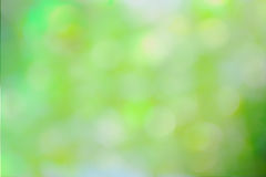 Green and yellow abstract defocused background Stock Images