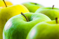 Green and yellow apples close up view on a white background Stock Images