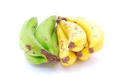 Green and yellow bananas Stock Photography
