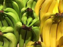 Green and yellow bananas closeup Royalty Free Stock Photo