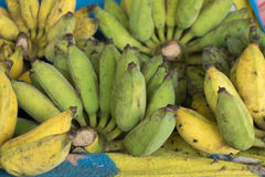 Green and yellow bananas on the market, Thailand. Stock Photo