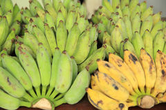 Green and yellow bananas Stock Image