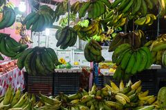 Green and yellow bananas for sale. At street market Stock Photography