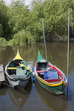 Green and yellow Bateira boats Royalty Free Stock Photography
