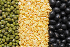 Green,  yellow and black mung bean Stock Photos