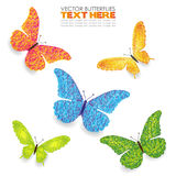 Green yellow blue orange butterflies isolated hand Stock Photography