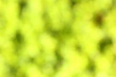Green-yellow blured background Stock Photo
