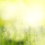 Green and yellow bokeh background Stock Photo
