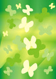 Green and yellow butterflies Stock Image