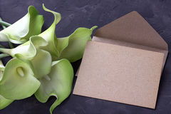 Green and yellow calla lily flowers with envelope on plaster gray background. Copy space. Stock Photo