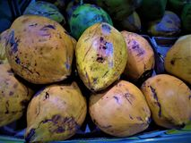 Green and yellow coconuts. On the heap in market Stock Photos