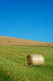 Green and yellow field. Hay bales on a clear summers day, and a beautifull landascape Stock Photos