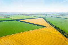 Green and yellow fields above aerial view Stock Photo