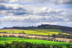 Green and yellow fields in early spring. Cloudy blue sky Royalty Free Stock Photos