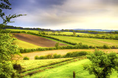 Green and yellow fields in early spring. Green and yellow fields before the storm at dawn in early spring Stock Photos
