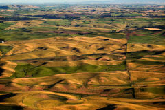Green Yellow Fields Farms Palouse Washington. Green Yellow Wheat Grass Fields Farms Palouse Washington State Pacific Northwest Stock Photos