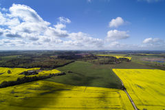 Green and yellow fields in latvian springtime. Royalty Free Stock Image