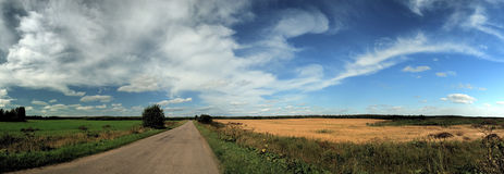 Green and yellow fields and sky panorama. Summer green and yellow fields and blue sky panorama Stock Image