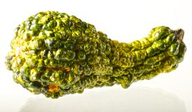 Green and Yellow Gourd Stock Photo