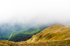 Green and yellow grass in the mountains of Caucasus in Russia in May in Lagonaki. Sunlit mountain landscape in a cloudy day with nobody Royalty Free Stock Images