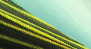 Green, Yellow, Grass, Sky royalty free stock photo
