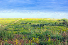 Green-yellow grassy valley and blue cloudly sky Stock Photo