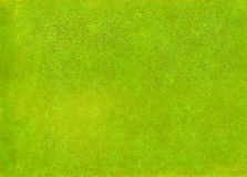 Green yellow leather surface. Royalty Free Stock Image