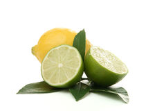 Green and yellow lemon Stock Photography