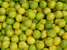 Green and yellow lemons Royalty Free Stock Photos