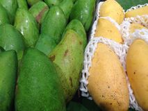 Green and yellow mangoes Royalty Free Stock Photo