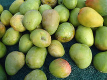 Green and Yellow Mangos for sale at Market Stock Images