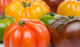 Green, yellow, orange and purple tomatoes. Background of green, yellow, orange and purple tomatoes Stock Images