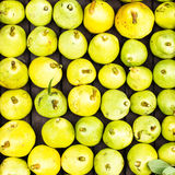 Green and yellow Pears at a famers market may use as background, Royalty Free Stock Photos