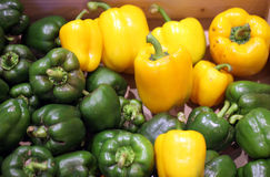 Green and yellow pepper Stock Photos