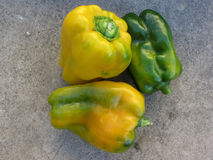 Green and yellow peppers Stock Images