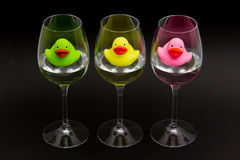 Green, yellow and pink rubber ducks in wineglasses Stock Image