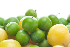 Green and yellow plum royalty free stock photos