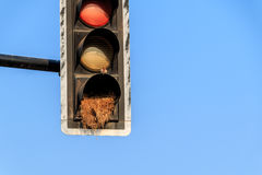 green yellow Red old traffic light sign combined bicycle and ped Stock Photos