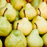 Green And Yellow Ripe Pears Background Stock Images