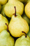 Green And Yellow Ripe Pears Background Royalty Free Stock Photos