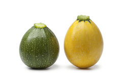 Green and yellow round zucchini Stock Photos