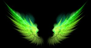 Green and yellow sharp wings