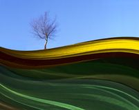 Green, Yellow, Sky, Leaf royalty free stock images