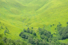 Green-yellow slope Royalty Free Stock Images