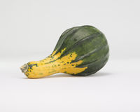 Green and Yellow Squash  on White Background Royalty Free Stock Image