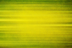 Green and yellow stripy grounge background Stock Photo